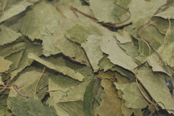 Cambridge Nutrition UK Dried Birch Leaves