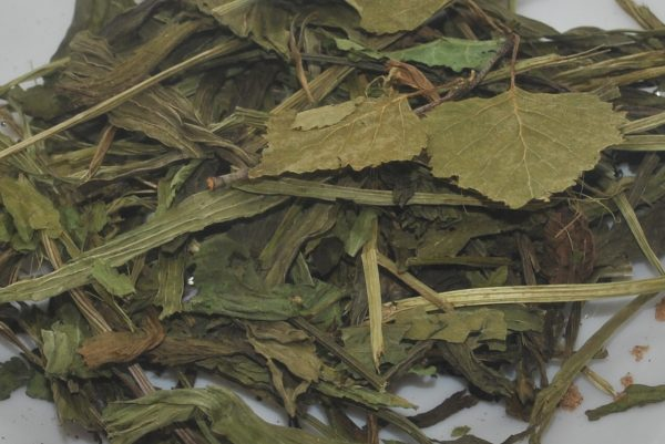 Reptile leaves