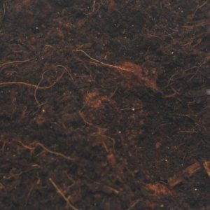 Cambridge Nutrition UK Spider Coir