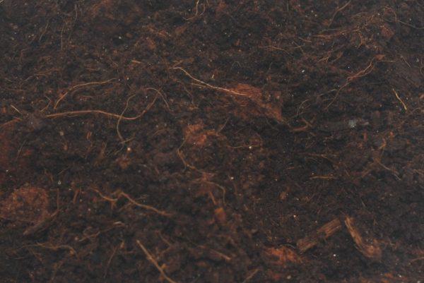 Cambridge Nutrition UK Spider Coir